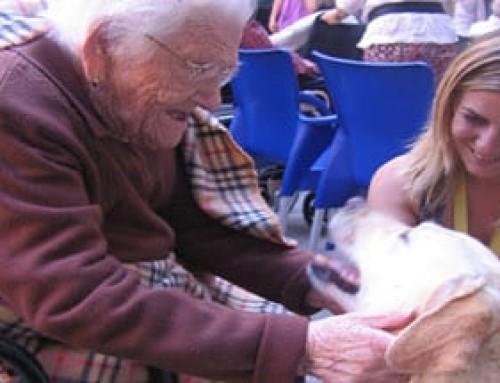 Subvenciones Bono Respiro y estancias en centros de día y residencias para ancianos dependientes
